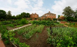 Tryon_Kitchen_Garden_Compressed