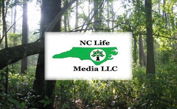 NC Life Media