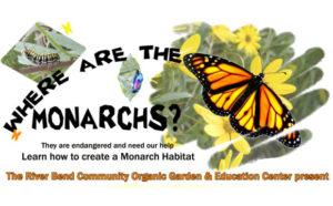 Where are the Monarchs