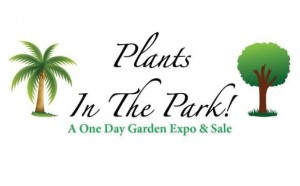 plants-in-the-park