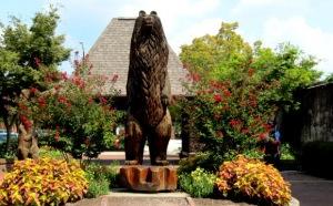Bear Plaza New Bern