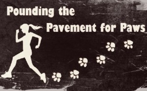 Pounding the Pavement for Paws