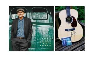 James Taylor Signed Guitar Auction