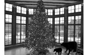 Christmas Memories by June Kent
